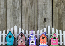Colorful birdhouses by white picket fence Royalty Free Stock Photo