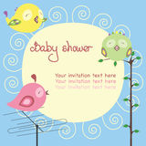 Colorful birds. Baby shower postcard with a colorful birds Royalty Free Stock Image