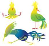 Colorful birds cartoon illustration Stock Photos