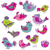 Colorful Birds Doodle Collection Royalty Free Stock Photo