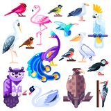 Colorful birds flat illustration. Vector logo icons set. Cute characters isolated on white background royalty free illustration