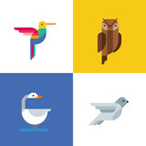 Colorful birds flat logo icons. Set of vector colorful birds illustration of hummingbird, owl, pigeon and swan. Stock Photos