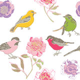 Colorful birds and flowers pattern Stock Image