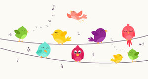 Colorful birds sitting on wire Stock Photos