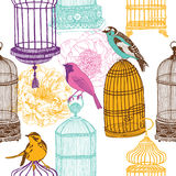 Colorful birds and various cages print Stock Images