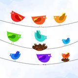 Colorful birds on wires Royalty Free Stock Photo
