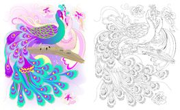Colorful and black and white pattern for coloring. Fantasy drawing of peacocks couple. Worksheet for children and adults. Vector cartoon image. Scale to any stock illustration