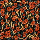 Colorful blooming poppies seamless pattern. Colorful blooming wild poppies on a dark background Stock Illustration