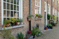 Colorful flowering potted plants in an old Dutch beguinage. Colorful blooming potted plants in the historic beguinage in the Dutch city of Breda, North Brabant Royalty Free Stock Image