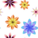 Colorful blossoms seamless  pattern, transparent background. Royalty Free Stock Images