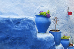 Colorful blue flower pots Stock Photos