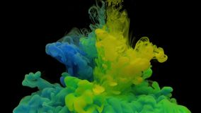 Colorful blue and yellow ink drops from above mixing in water, swirling softly underwater on black background. Acrylic cloud of paint isolated. Abstract smoke stock video footage