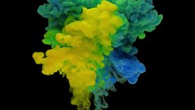 Colorful blue and yellow ink rise up in the water and mixing. Swirling softly underwater on black background. Acrylic cloud of paint isolated. Abstract smoke stock video