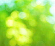 Colorful blurred background. In the green colors, the bokeh effect Royalty Free Stock Photos