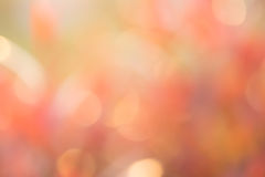 Colorful blurred bokeh background Stock Photos
