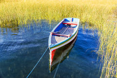 Colorful Boat and Reeds Royalty Free Stock Photography