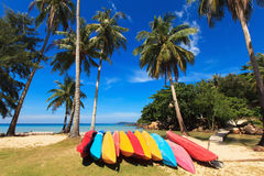Colorful boats and coconut palms. On the sandy sea coast Stock Photography