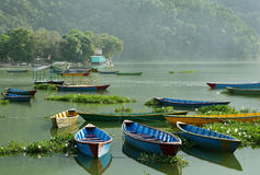 Colorful boats parked in Phewa lake Stock Photography