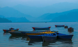 Colorful boats in Phewa Lake Stock Images