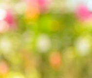 Colorful bokeh abstract background Royalty Free Stock Photography