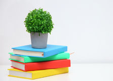 Colorful book on console white table. Stock Photography