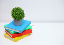 Colorful book on console white table. Royalty Free Stock Photos