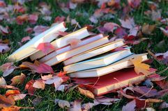 Colorful books in campus in fall season Stock Photo