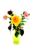 Colorful bouqet of roses in green vase. Isolated on white background stock image