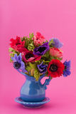 Colorful bouquet Anemones Stock Images