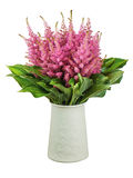 Colorful bouquet from astilbe and funkia flowers in vase isolate Royalty Free Stock Image