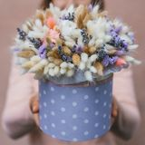 Colorful bouquet of different dried flowers deadwood flowers in the hands of florist woman. Rustic flower background. Colorful bouquet of different dried flowers stock photography