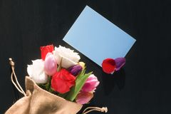 Flower bouquet and mesage card with petals Royalty Free Stock Images