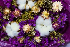 Colorful bouquet of dry wildflowers and cotton royalty free stock photos
