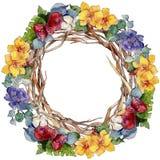Colorful bouquet. Floral botanical flower. Wild spring leaf wildflower frame. stock image