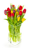 Colorful bouquet of fresh spring tulip flowers Stock Images
