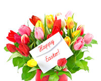 Colorful bouquet of fresh tulip flowers Royalty Free Stock Photos