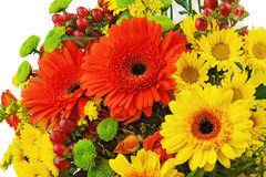 Colorful bouquet from gerbera flowers isolated on white backgrou Stock Photography