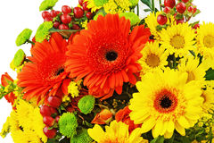 Colorful bouquet from gerbera flowers isolated on white backgrou Royalty Free Stock Photography