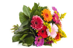 Colorful bouquet Stock Images