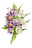 Colorful bouquet of lilies Stock Photography