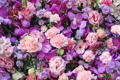 Colorful bouquet of pink carnation and purple orchids stock image
