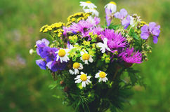 Colorful bouquet of summer flowers on green meadow background Stock Photos