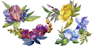 Colorful bouquet tropical flowers. Floral botanical flower. Isolated illustration element. Aquarelle wildflower for background, texture, wrapper pattern, frame Royalty Free Stock Images