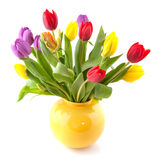 Colorful bouquet tulips Royalty Free Stock Image