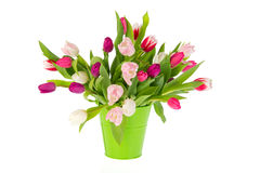 Colorful bouquet tulips Stock Photos