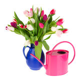 Colorful bouquet tulips Royalty Free Stock Photos