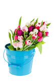 Colorful bouquet tulips in bucket Royalty Free Stock Photography