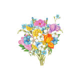 Colorful bouquet Royalty Free Stock Photos