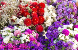 Colorful bouquets Royalty Free Stock Photos