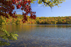 Colorful branches frame Russell Pond in autumn, New Hampshire. Royalty Free Stock Photo